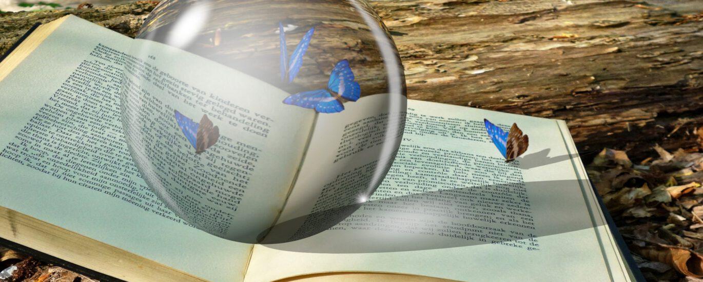 Besondere Fähigkeiten durch Lesen